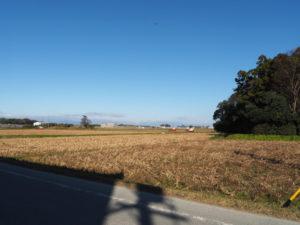 神麻続機殿神社付近で遭遇した大豆の収穫