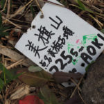 美旗山の山頂標(イセAOKI)