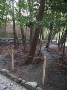 瀧祭神の裏手に続く踏み跡