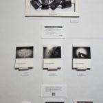 床上での展示シミュレーション(「ZINEをつくる」研究成果展)