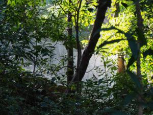多賀宮の石垣に設置された落石防止網(外宮)