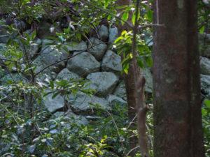 多賀宮背面の斜面に積まれている石垣