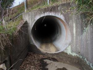 岩谷池から下流側の立梅用水「5-1-31」の先(多気町丹生)
