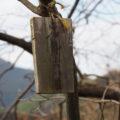 岩谷池から下流側の立梅用水「5-1-30」付近で見つけた「お伊勢まいり」札(多気町丹生)