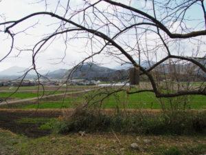 岩谷池から下流側の立梅用水「5-1-30」付近(多気町丹生)