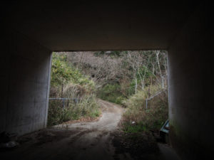 伊勢自動車道「松阪39」からその先へ(多気町丹生)