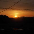 河原神社(豊受大神宮 摂社)の社叢へと近づく日の出