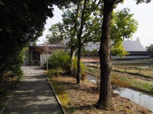 勾玉池の散策路から望むせんぐう館(外宮)