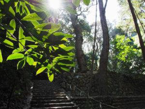 伊我理神社(豊受大神宮 末社)、井中神社(同)を同座への石階