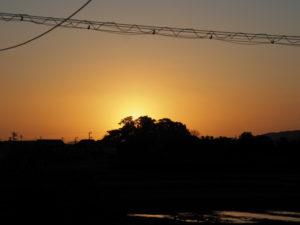 春分の日の出は、河原神社(豊受大神宮 摂社)の社叢から