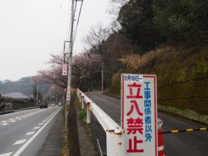 音無山遊歩道に咲くサクラ(伊勢市二見町江)