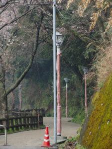 舗装工事中の音無山遊歩道に建て替えられ照明灯(伊勢市二見町江)