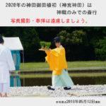 【情報】2020年の神田御田植初(神宮神田)は神職のみでの斎行