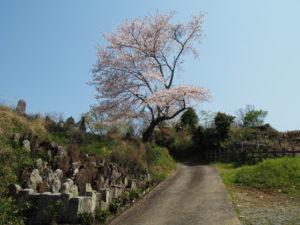 近鉄鳥羽線と隣接した墓地(伊勢市楠部町)