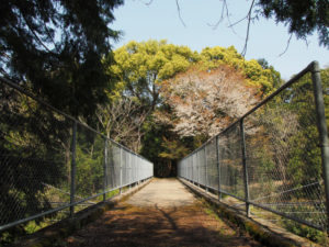 近鉄鳥羽線の架橋(伊勢市楠部町)