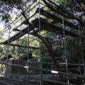 古殿地に足場が組み上げられていた志宝屋神社(豊受大神宮 末社)