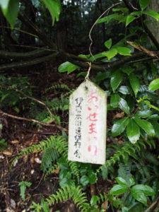棒原神社の社叢に接する伊勢本街道(度会郡玉城町上田辺)