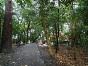 新御敷地の簀屋根が取り外された志宝屋神社(豊受大神宮 末社)