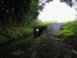 県道421号と交差して流れる津田[土地改良区の]用水(多気町津留)