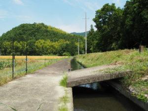 県道421号に沿って流れる津田[土地改良区の]用水(多気町津留)