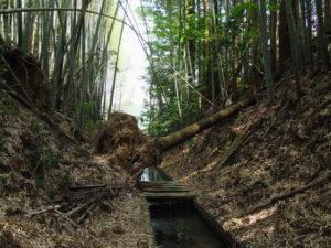 津田[土地改良区の]用水(多気町牧)