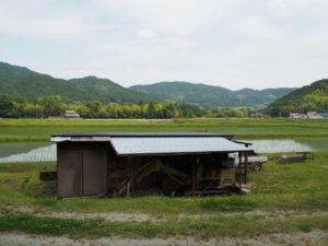 津田[土地改良区の]用水からの風景(多気町牧)