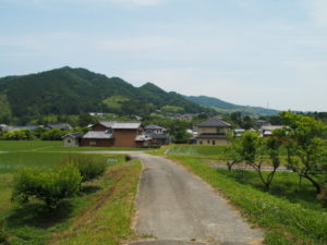 津田[土地改良区の]用水からの風景(多気町鍬形)