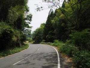 県道421号、右下が津田[土地改良区の]用水(多気町牧)
