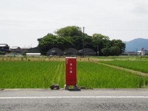 消火器と御薗神社の社叢