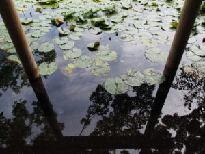 朧ヶ池、船江上社(伊勢市船江)