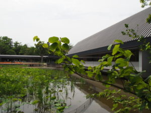 茜社側から眺めた勾玉池およびせんぐう館
