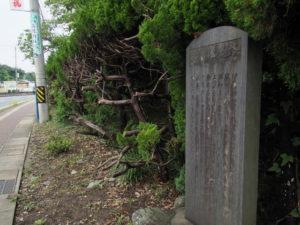 御木本道路の石碑