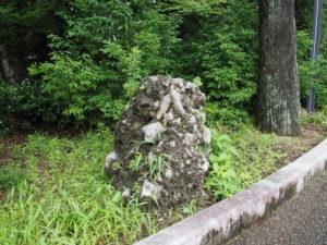 この石は?、せんぐう館付近の観光バス駐車場(外宮)