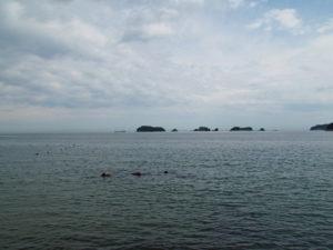 グランピング施設付近から眺める飛島