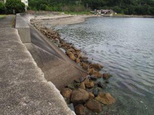 池の浦シーサイド駅(JR参宮線)付近の堤防脇に散乱する切石