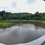 せんぐう館から望む勾玉池と奉納舞台、休憩舎