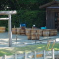 立ち並ぶ鹹水の樽、御塩浜(伊勢市二見町西)