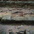 崩れていたのはこの石?!、度会大国玉比賣神社(豊受大神宮 摂社)