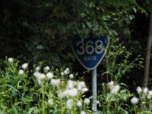 隠された?国道368号の道路標識(多気町朝柄)