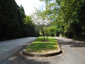 桜峠、和歌山別街道・国道368号(多気町朝柄)