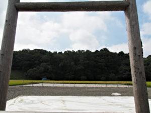 抜穂祭の名残テント、神宮神田(伊勢市楠部町)