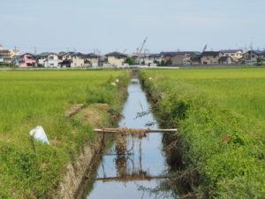 伊勢市御薗町小林の水路