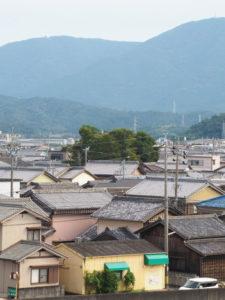 一色大橋(勢田川)から望む一色神社の社叢