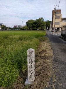 社叢の遠望、箕曲神社(伊勢市小木町)