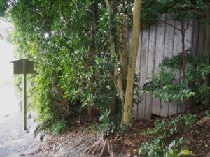 修繕工事の準備が始められた田上大水神社(豊受大神宮 摂社)