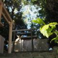 今週は変化がなかった田上大水神社・田上大水御前神社(豊受大神宮 摂社)