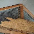 猫よけ網が取り付けられた御役所稲荷社、二木神社(伊勢市御薗町小林)