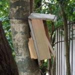 工事に伴い移動されたあの小箱の役割は?、田上大水神社・田上大水御前神社(豊受大神宮 摂社)