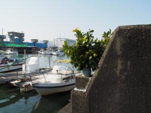 勢田川防潮水門付近
