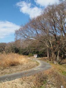 宮川ラブリバー公園付近